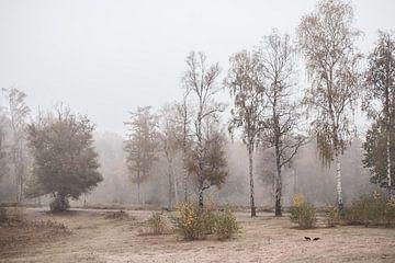 Landschappen 6 van Mariëlle de Valk