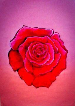Rose von artist Clem