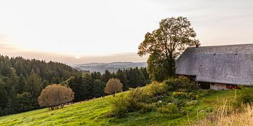 Schwarzwald boerderij in het Zwarte Woud bij zonsondergang van