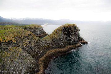Vogelrots IJsland van Veronie van Beek