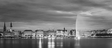De skyline van Hamburg in zwart-wit
