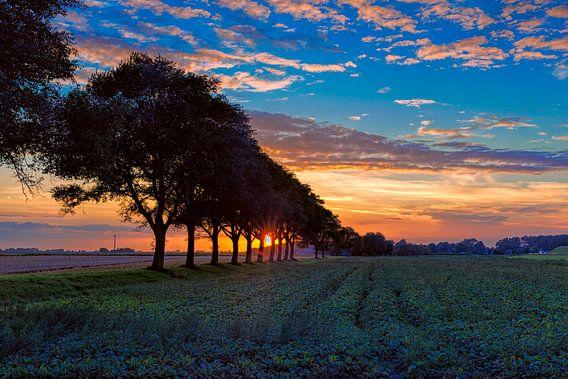 zonsondergang van eric van der eijk