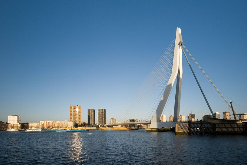 De Erasmusbrug in het zonnetje van Pieter van Roijen