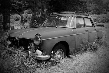 Peugeot 404, schwarz/weiß von Ton van Waard - Pro-Moois