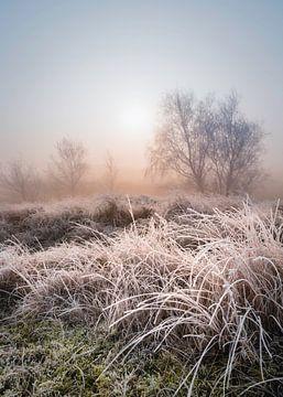 Bevroren zonsopkomst in Zeeland van Michel Seelen