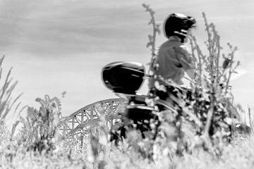 Sommer-Roller Waalbrug von Caroline Drijber