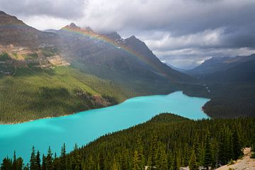 Peyto Lake, Icefield Parkway, Banff National Park, Alberta, Canada van Alexander Ludwig