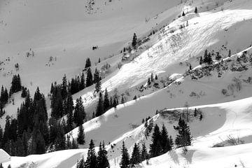 Skigebiet Tannheim von Aukelien Philips