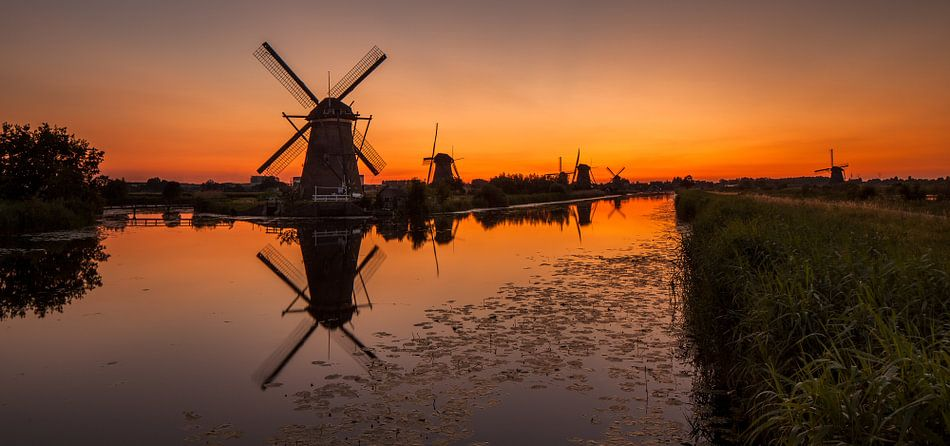 Oranje Kinderdijk van Marc Smits