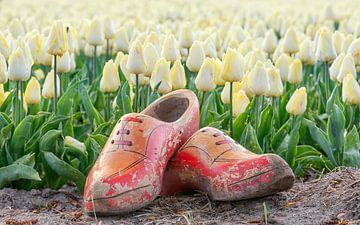 Ouderwetse klompen en tulpen van Jenco van Zalk