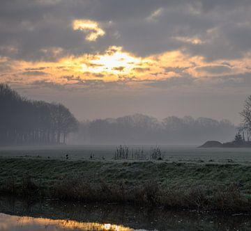 Sonnenlicht im Bach von Tania Perneel