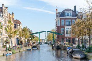 In de stad Leiden van