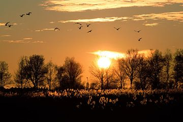 Sonnenuntergang Volendam von Annemarie Kroon