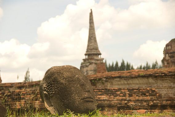 Buddha's hoofd van Olaf Piers