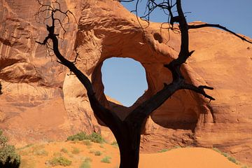 Monument Valley, Navajo Tribal park. Arizona, USA. van Gert Hilbink