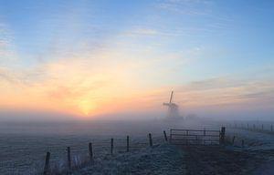 Mistige zonsopkomst bij molen Koningslaagte van
