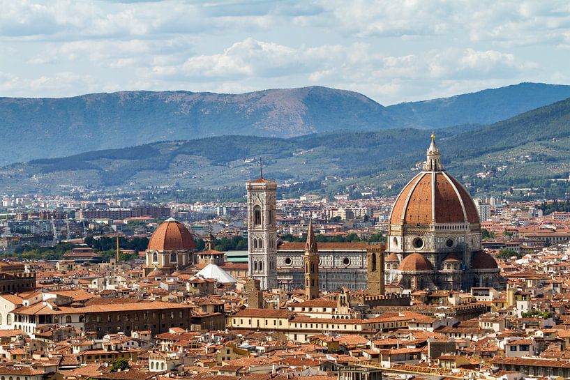 Florence skyline kathedraal van Dennis van de Water