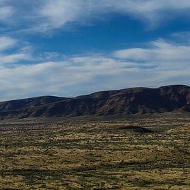Panorama Mount Bruce West Australië van Tessa Louwerens