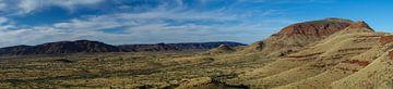 Panorama Mount Bruce West Australië van