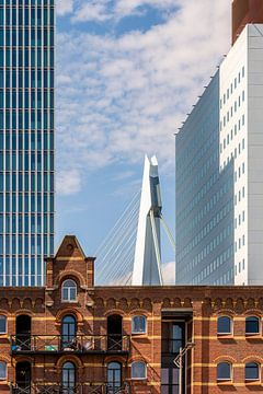 Rotterdam Kop van Zuid sur Kok and Kok