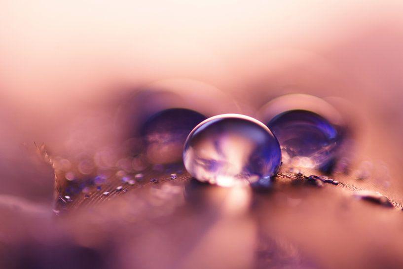 Pink Drops van Carla Mesken-Dijkhoff