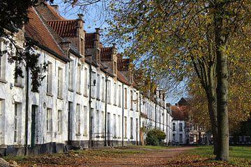 St. Alexiusbegijnhof, Dendermonde, België. van Imladris Images