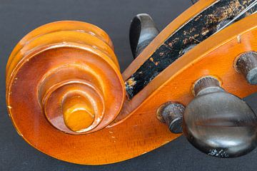 Cello van Hanna Vlietstra
