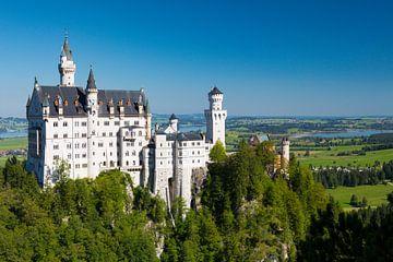 Schloss Neuschwanstein von Steffen Schöne