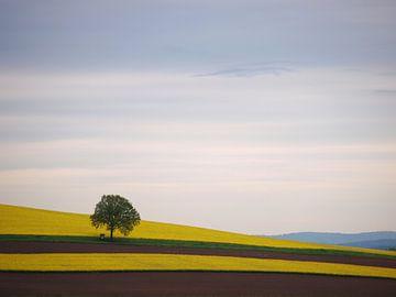 Saarland von