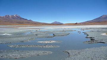 'Landschap', Bolivia von Martine Joanne