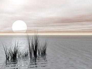 Coucher / lever du soleil sur le lac sur Gabi Siebenhühner