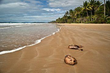 Tropisch strand in Australië van Roel Beurskens