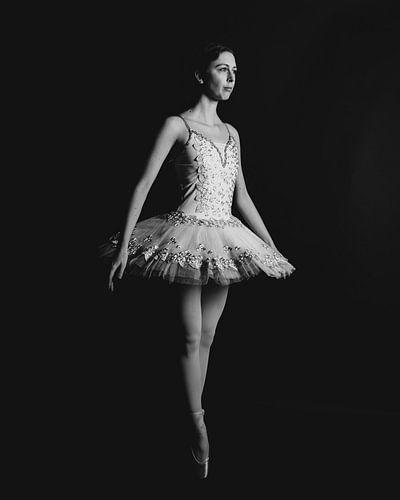 Balletdanser in zwartwit staadn 03