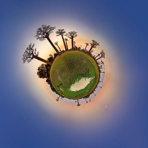 Planeet Baobab na zonsondergang van Dennis van de Water