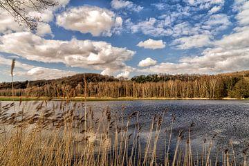 """Hoogwater bij """"De Diepen"""" Milsbeek, Noord-Limburg van Jeroen Hoogakker"""