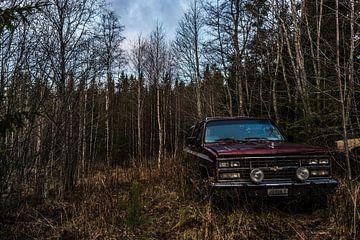 old chevy van Stefan Pronk