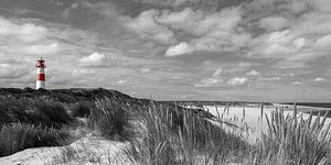 Vuurtoren in zwart-wit van Christoph Schaible