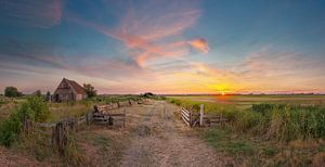 Kippenschuur Den Hoorn Texel zonsondergang van