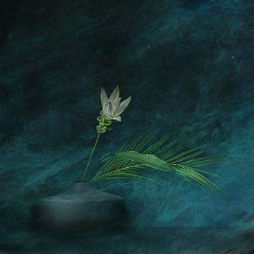 Le rêve du curcuma. sur Saskia Dingemans