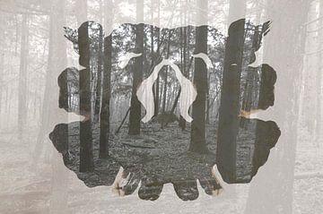 Rorschach von Romy Zuidveld
