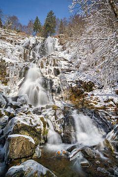 Todtnau waterval in de winter van Michael Valjak