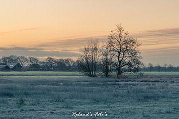 een koude winterochtend in januari van Roland's Foto's