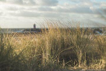 Noordelijk havenhoofd Scheveningen van Anne Zwagers