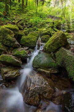 Bergfluss von Sergej Nickel