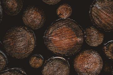 Das Holz von Colin Bax