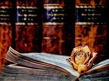 Rose im Buch