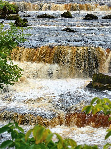 Aysgarth Upper Falls van Gisela Scheffbuch