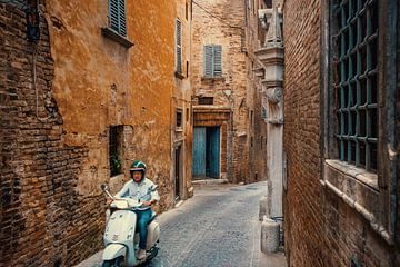 Urbino van Studio Reyneveld
