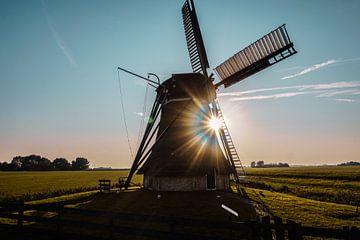 Het symbool van Nederland! van Nynke Nicolai