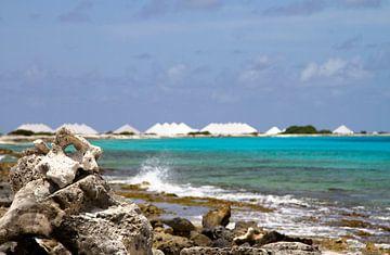 De zoutvlaktes van Bonaire van noeky1980 photography